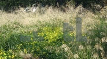 (Προς Πώληση) Αξιοποιήσιμη Γη Οικόπεδο || Αθήνα Νότια/Γλυφάδα - 600 τ.μ, 850.000€