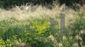 (Προς Πώληση) Αξιοποιήσιμη Γη Οικόπεδο || Αθήνα Νότια/Γλυφάδα - 500 τ.μ, 480.000€